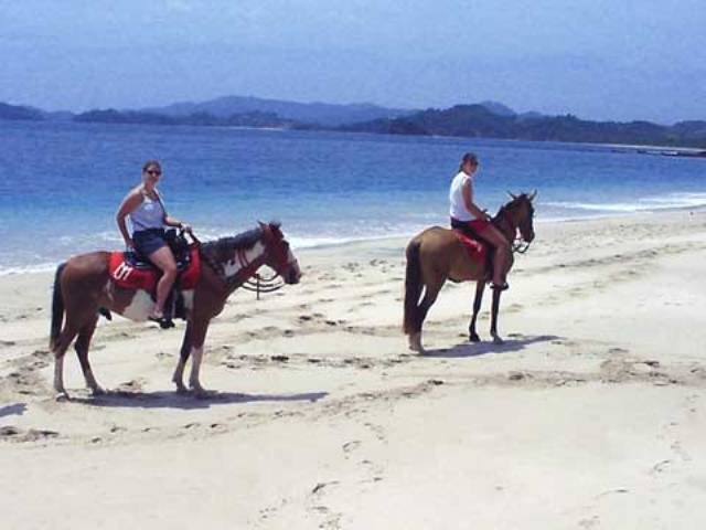 Take a ride on a horse along the beach during your spare time whilst studying Spanish courses in Tamarindo